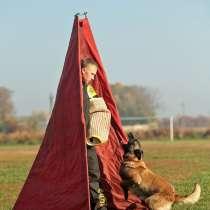 Дрессировка собак САРАТОВ, ЭНГЕЛЬС, в Саратове