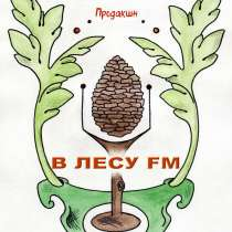 Изготовление аудиороликов, в г.Черновцы