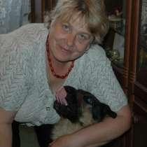 Ветеринар на дом, в Москве