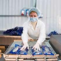 Упаковщик/ца на рыбообрабатывающее производство (вахта), в Санкт-Петербурге