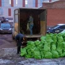 Вывоз мусора Вывоз веток с дачи и мусора с любого объекта, в Омске