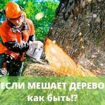 Удаление деревьев, обрезка, в Миассе