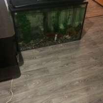 Продам аквариум 250 л, в Каменске-Уральском