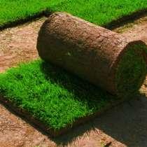 Устройство и комплексное обслуживание газонов, в Оренбурге