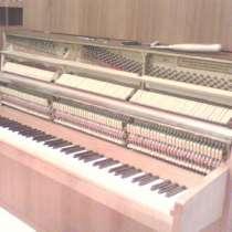 Настройка фортепиано (пианино и роялей), в Раменское