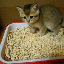 Наполнитель для кошачьего туалета, в Видном
