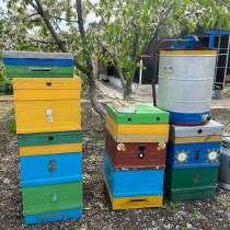 Инвентарь пчеловода, в Новошахтинске