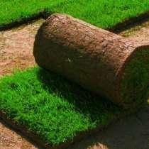 Рулонный газон от производителя, в Владимире