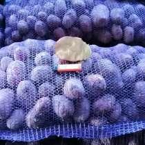 Продам картофель, в Воткинске