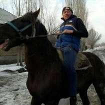 Тимур, 39 лет, хочет пообщаться, в Москве