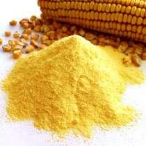 Кукурузная мука очень яркая, в Краснодаре