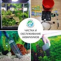 Обслуживание аквариумов, в Краснодаре