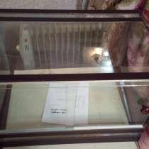 Продаётся новый террариум, в г.Бишкек
