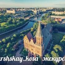 Экскурсии индивидуальные , в Калининграде