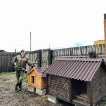 Будки для собак, в Иркутске