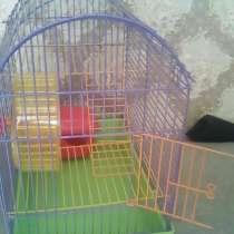 Продам клетку для грызунов, в Смоленске