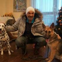 Дрессировка собак всех пород. Услуги зоопсихолога, в г.Ереван