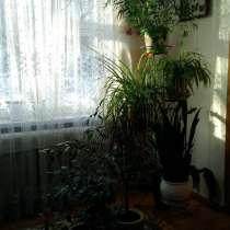 Двухкомнатная квартира на Удмуртской 251а, в Ижевске