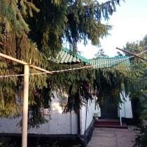 Домик с виноградником и ёлкой, в Гуково