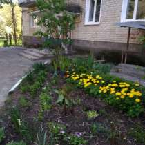 Продаю 3-комн. квартиру от хозяина, в г.Нововолынск