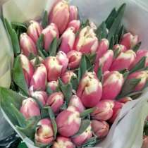 Тюльпаны к 8 марта!, в Улан-Удэ