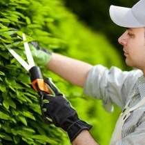 Садовники любые работы в саду и на участке, в Москве
