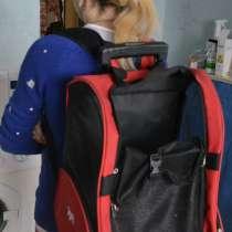 Сумка рюкзак на колесиках для маленьких средних собак складн, в Раменское