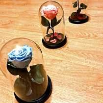 Розы в колбе, в Аксае
