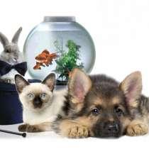 Поиск поставщиков товаров для животных, в Новосибирске