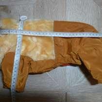 Одежда для собак, в Москве