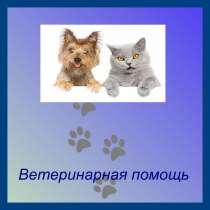 Ветеринарный врач, в Челябинске