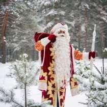 Дед Мороз и снегурочка!, в Орехово-Зуево