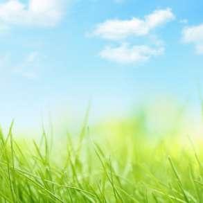 Озонирование, помещений, автомобилей от вирусов и запахов, в Тюмени