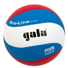 GALA - чешская компания по производству спортивных мячей и, в г.Костанай