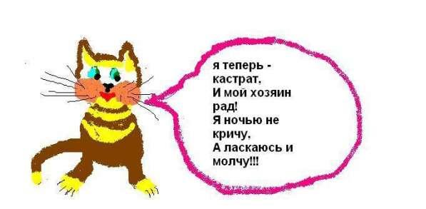 Кастрация котов, кобелей недорого (у вас на дому)! В Москве