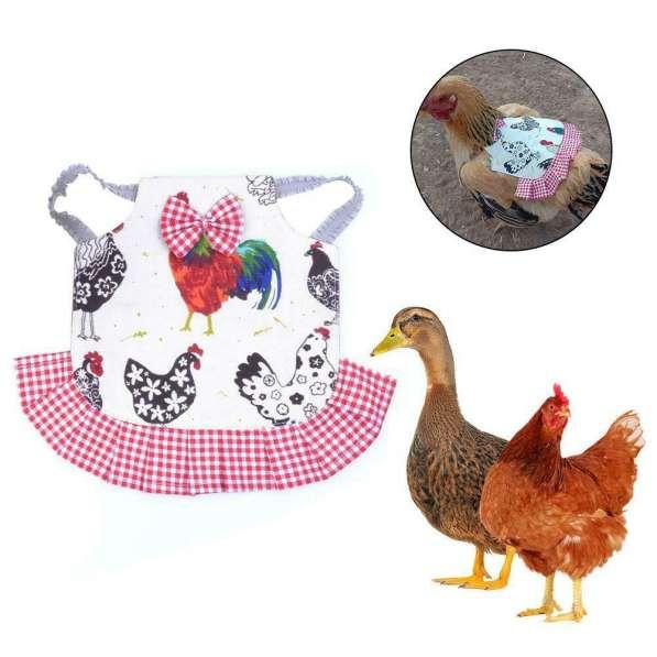 Попона для кур Защита курицы от петуха в Астрахани фото 3