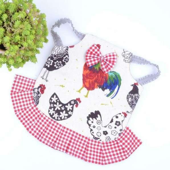 Попона для кур Защита курицы от петуха в Астрахани фото 4