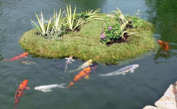 Создание естественных водоемов Плавающие Клумбы Био-Фильтры в Сочи фото 5