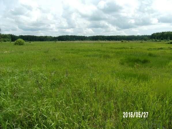 Сдам в аренду земли сельхозназначения в Коломне фото 3