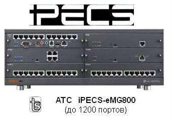 Центральный процессор eMG800