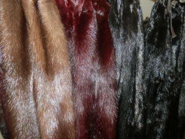Продам мех : норка, соболь, лиса, бобр, колонок, хорёк и т.д