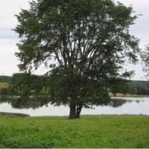 Земельный участок для строительства базы отдыха, в Нижнем Новгороде