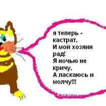 Кастрация котов, кобелей недорого (у вас на дому)! В Москве, в Москве
