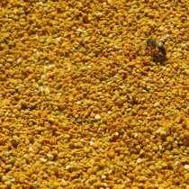Пыльца с собственной пасеки , в Москве