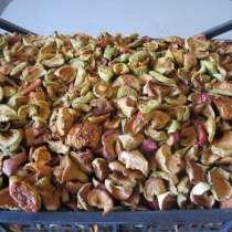 Сушёные яблоки, в Саратове