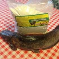 Пробиотическая добавка для выращивания товарной рыбы, в г.Астрахань