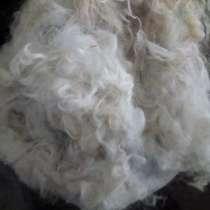 Продаю не обработанный козий пух и овечью шерсть, в Краснодаре