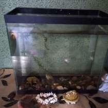 Продам аквариум, в г.Хабаровск