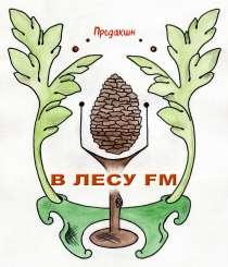Изготовление аудиорекламы, в г.Кировоград