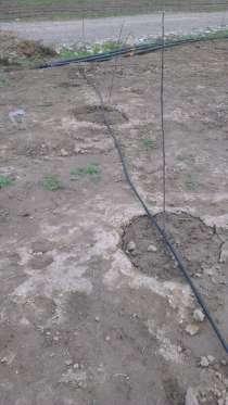 Капельное и дождевое орошение и фильтры, в г.Алматы